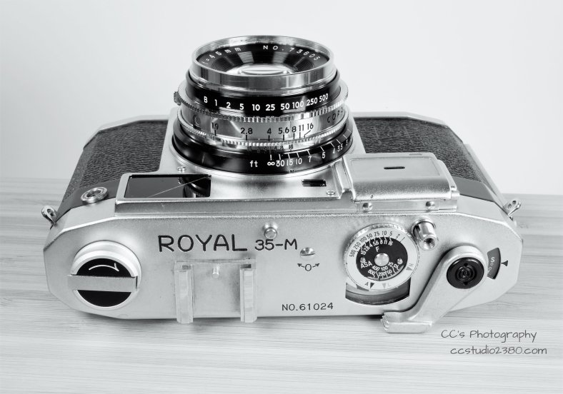 royal 35m logo2