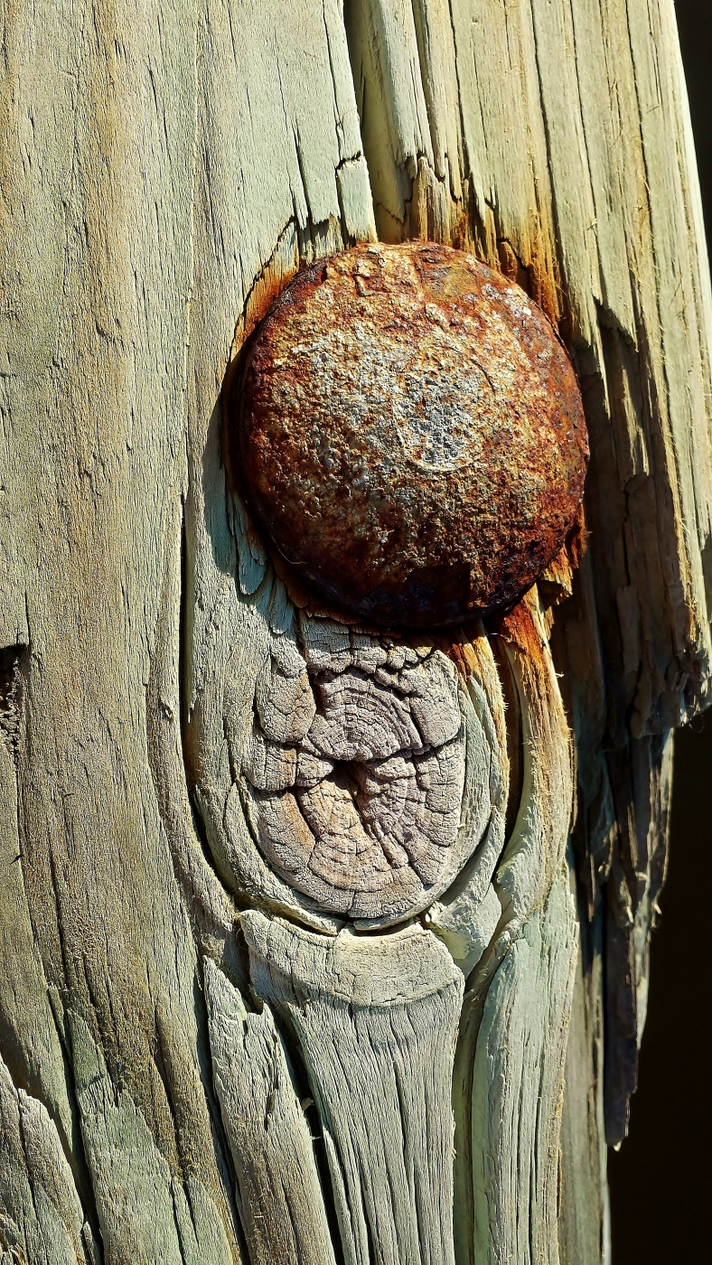 rust and wood 3