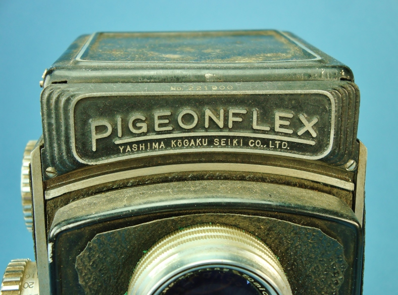pigeonflex with dirt
